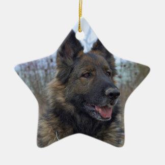 perrito negro y del moreno hermoso del pastor adorno de cerámica en forma de estrella