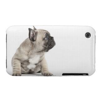 Perrito pedigrí iPhone 3 Case-Mate protector