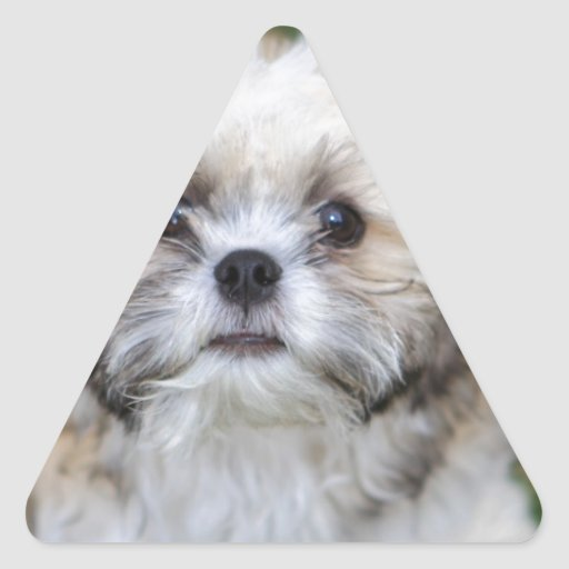 Perrito Pegatina Triangular