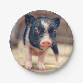 Perrito picazo del cerdo para los amantes del platos de papel