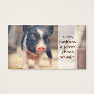 Perrito picazo del cerdo para los amantes del tarjetas de visita