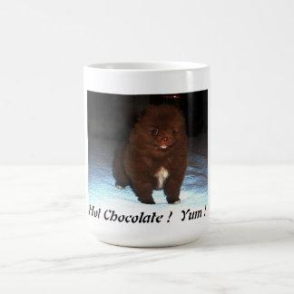Perrito pomeranian del chocolate en la taza
