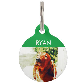 Perrito precioso de Irish Setter Placa Para Mascotas