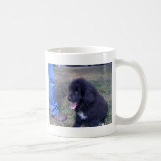 Perrito precioso de Newfie (raza del perro de Taza Clásica