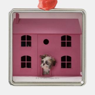 Perrito que mira fuera de la casa de muñeca adorno cuadrado plateado