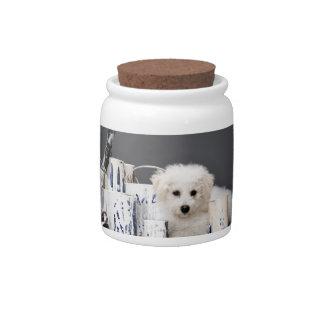 Perrito que se sienta entre las latas de la pintur plato para caramelo