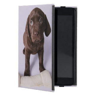 Perrito que se sienta por un hueso iPad mini cárcasas
