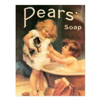 Perrito que toma un baño tarjetas postales