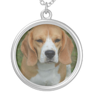 Perrito realmente lindo del beagle pendiente