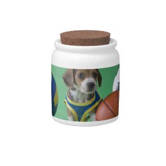 Perrito rodeado por las bolas del deporte platos para caramelos