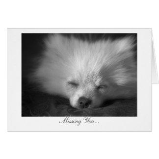 Perrito soñoliento - falta de usted tarjeta de felicitación