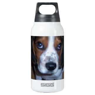 Perrito tonto del beagle de Randy del perro