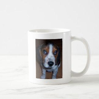Perrito tonto del beagle de Randy del perro Taza