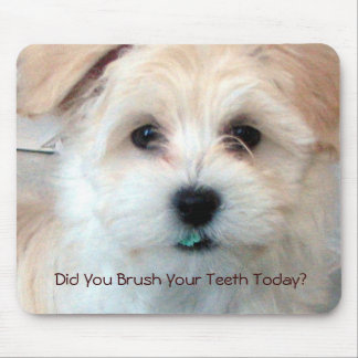 ¿Perrito - usted cepilló sus dientes hoy? Tapete De Ratón