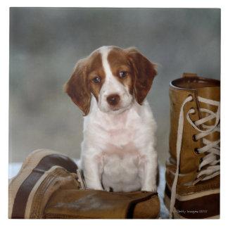 Perrito y botas azulejo cuadrado grande