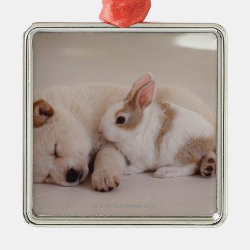 Perrito y conejo adorno navideño cuadrado de metal