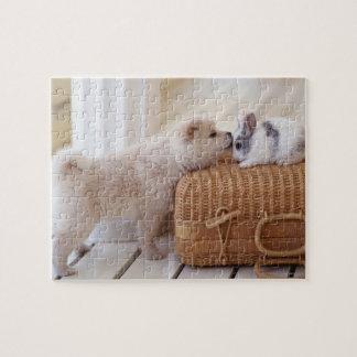 Perrito y conejo puzzles con fotos