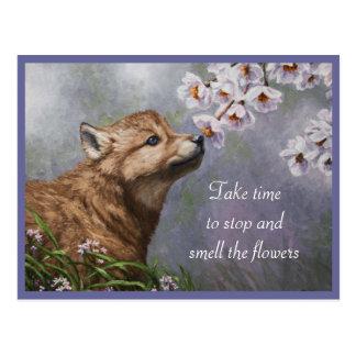 Perrito y flores de lobo postal