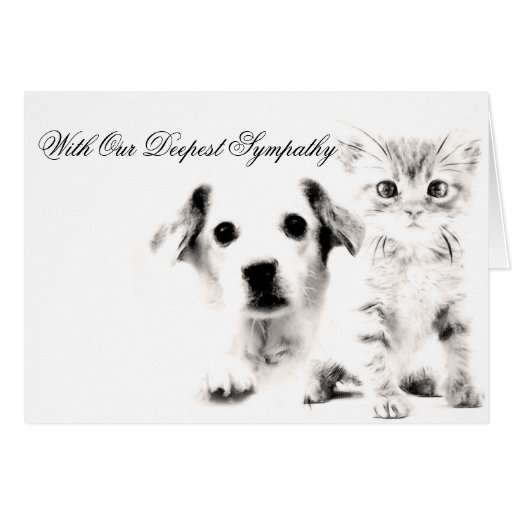 Perrito y gatito veterinarios de la tarjeta de