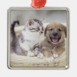 Perrito y gato del bebé ornamentos de reyes magos