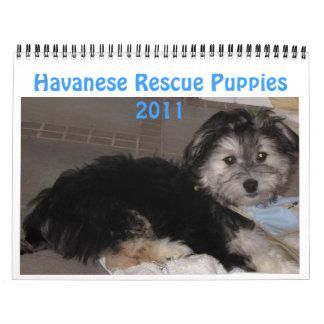 Perritos 2011 de Havanese Rescu Calendarios De Pared