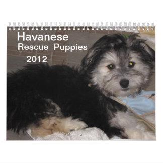 Perritos 2012 del rescate de Havanese Calendarios