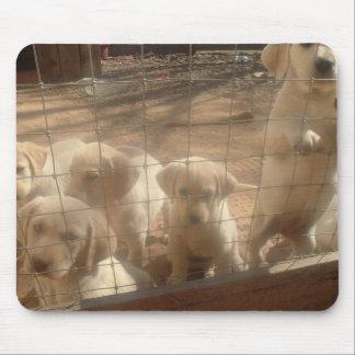 perritos amarillos del laboratorio tapete de ratón