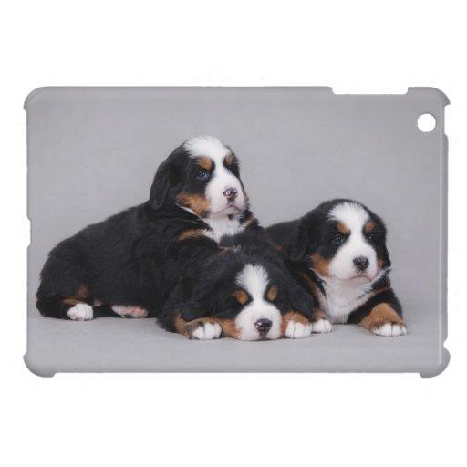 Perritos de Bernese iPad Mini Cárcasa