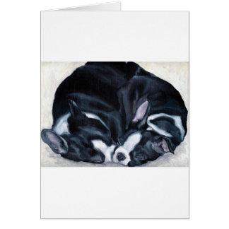 Perritos de Boston Terrier Tarjeta De Felicitación