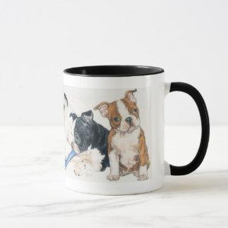 Perritos de Boston Terrier Taza