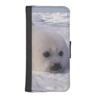 Perritos de foca de Groenlandia de la foca de Groe Fundas Cartera De iPhone 5