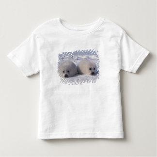 Perritos de foca de Groenlandia de la foca de Playera De Bebé