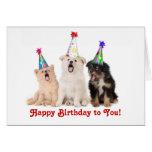 Perritos del canto tarjeta de cumpleaños