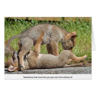 Perritos del coyote que muerden y que juegan tarjeta de felicitación