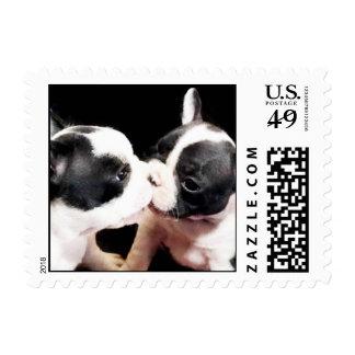 Perritos del dogo francés sello postal