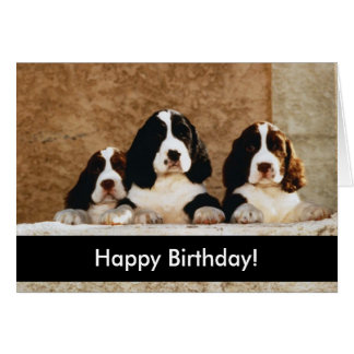 Perritos del feliz cumpleaños tarjetón