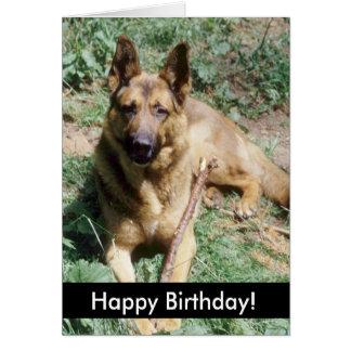 Perritos del feliz cumpleaños tarjeta
