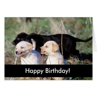 Perritos del feliz cumpleaños tarjetas