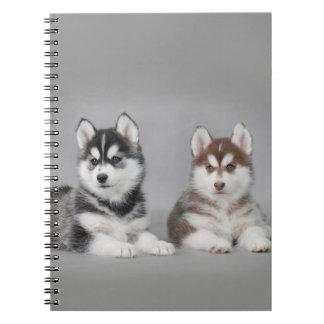 Perritos del husky siberiano libretas espirales
