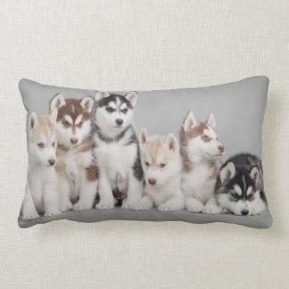 Perritos del husky siberiano en la almohada de cojín lumbar