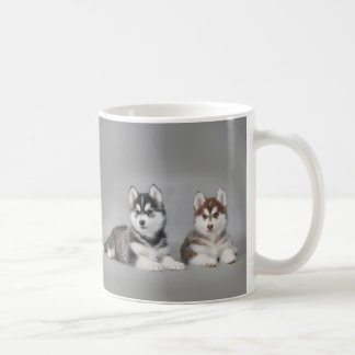 Perritos del husky siberiano taza básica blanca