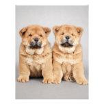 Perritos del perro chino de perro chino membretes personalizados
