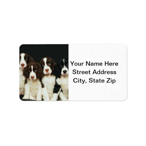 Perritos del perro de aguas de saltador inglés (2) etiquetas de dirección