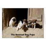Perritos en la puerta, los perritos de los taludes felicitaciones