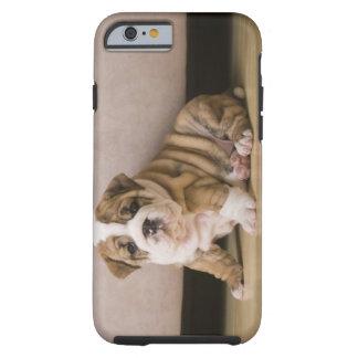 Perritos ingleses del dogo funda de iPhone 6 tough