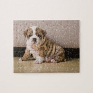 Perritos ingleses del dogo puzzles con fotos