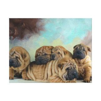 Perritos lindos del pei de Shar Lona Estirada Galerías
