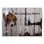 Perritos rescatados del día de madre tarjeta de felicitación