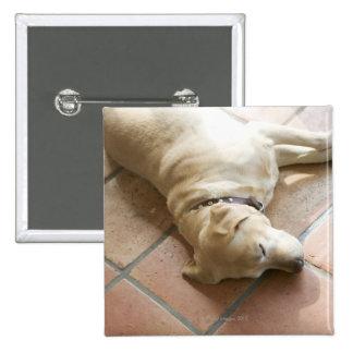 Perro 3 pin cuadrado