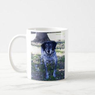 Perro 5, taza